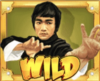 Wild Fight Slot Machine: simbolo Wild