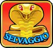 simbolo wild di desert treasure slot machine