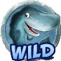 simbolo wild Icy Wonders slot machine