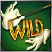 simbolo wild Illusions 2