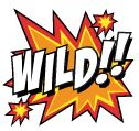 Simbolo Wild Jack Hammer