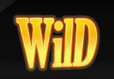 simbolo wild di Super Fast Hot Hot slot machine online