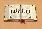 Wizard of Gem Slot Machine: simbolo Wild