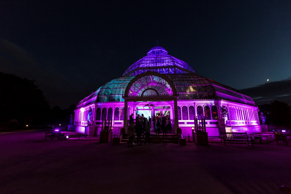 the-palm-house-red-bull-music-academy-1