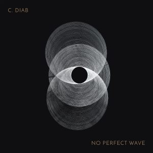 c-diab-no-perfect-wave-inc-copy