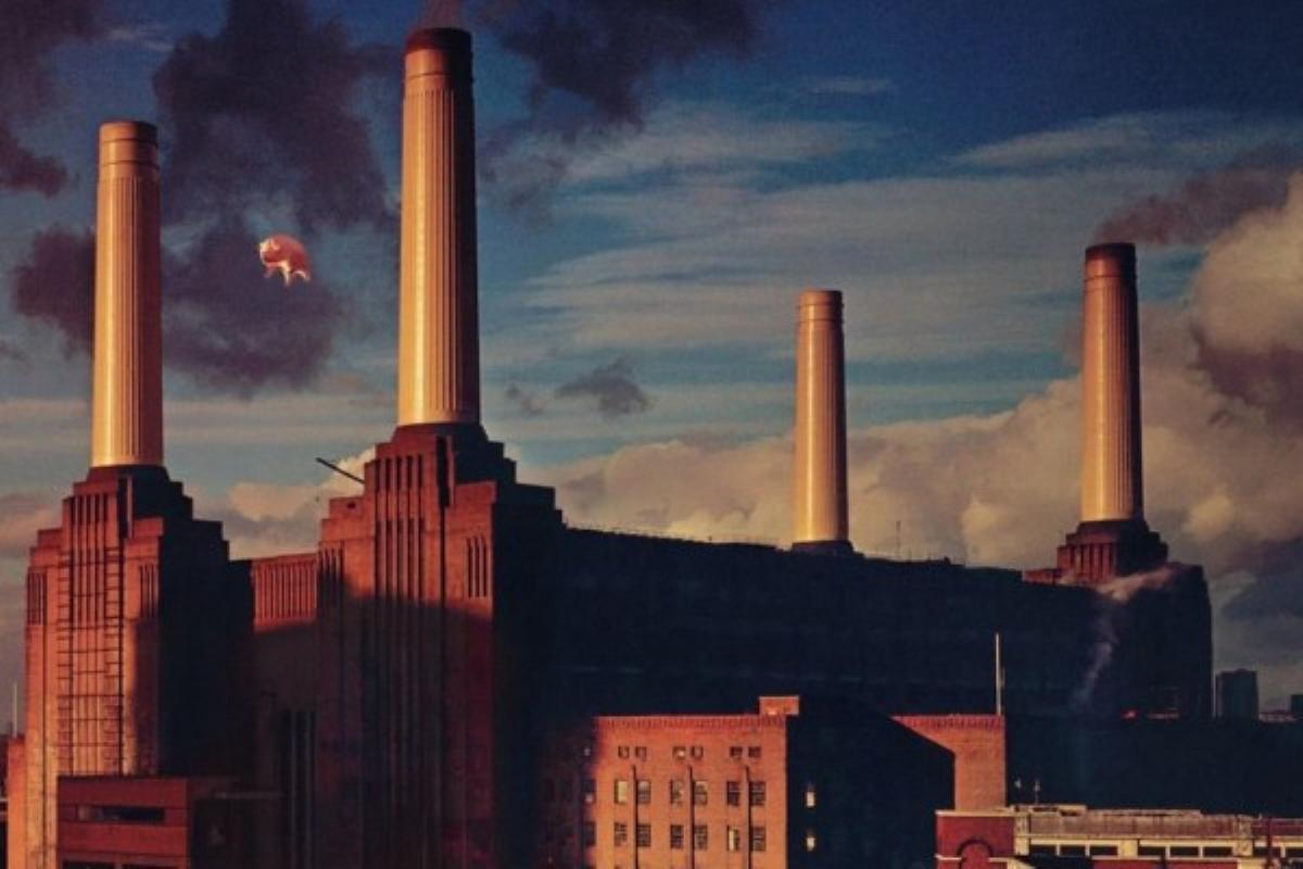 Pink Floyd S Animals Why Its Misanthropic Cynicism And
