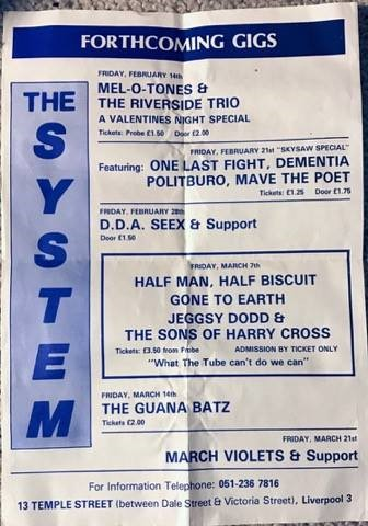 Flyer for The System