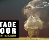 Stage Door: Animal Farm, The Spine, The Suicide, The Unlikely Candidate – February 2020