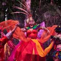 KREWE Liverpool: The Mardi Gras Experience: Sefton Park Palm House, Liverpool