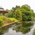 Why we love Sefton Park - celebrating Liverpool's favourite green space
