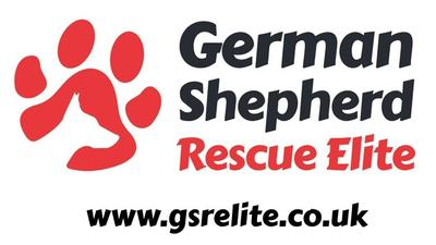 German Shepherd Rescue Elite is an established rescue with a team of dedicated volunteers who have many years experience with the breed. In today's difficult climate, many dogs find themselves in need of a home for a variety of reasons and our aim is to try and help in this process to the best of our abilities. We can also offer a wealth of advice to current German shepherd dog owners.
