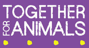 No animal should suffer from injury, disease, abuse or neglect.