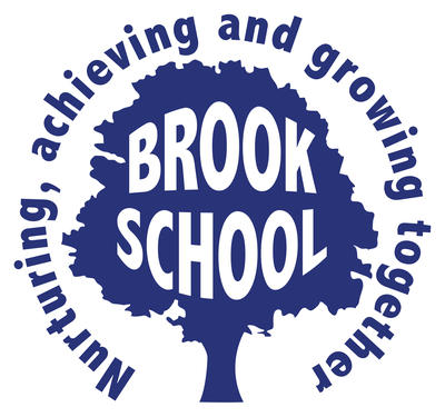 Brook Community Primary School is a friendly rural school close to Ashford.  Our vision is to ensure that every child in our care achieves their full potential within a family centred environment where tolerance, respect and excellence are at the heart of everything we do.