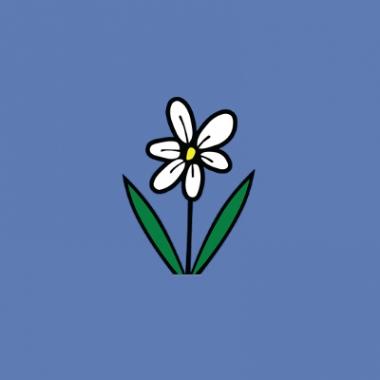Flowerama Design