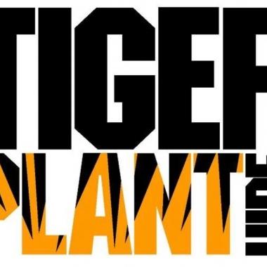 Tiger Plant Hire