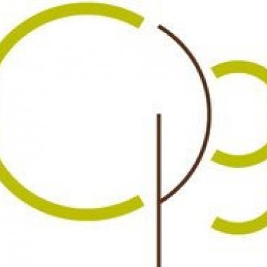 City Psychology Group
