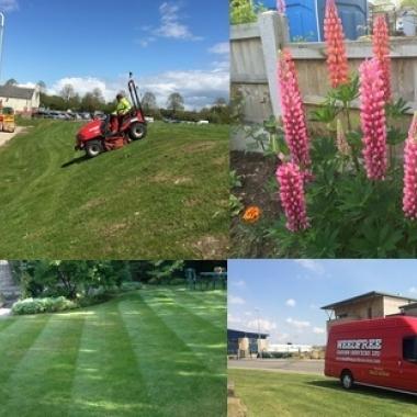 Weedfree Landscapes Ltd