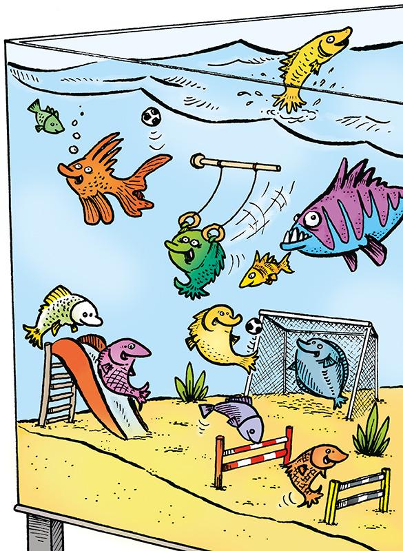 Image: Fish gym.