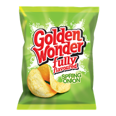 GOLDEN WONDER SPRING ONION 32.5g (32 PACK)