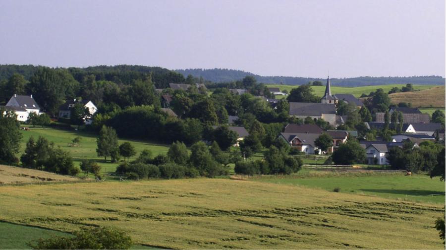 Culture shock: Working on a German farm