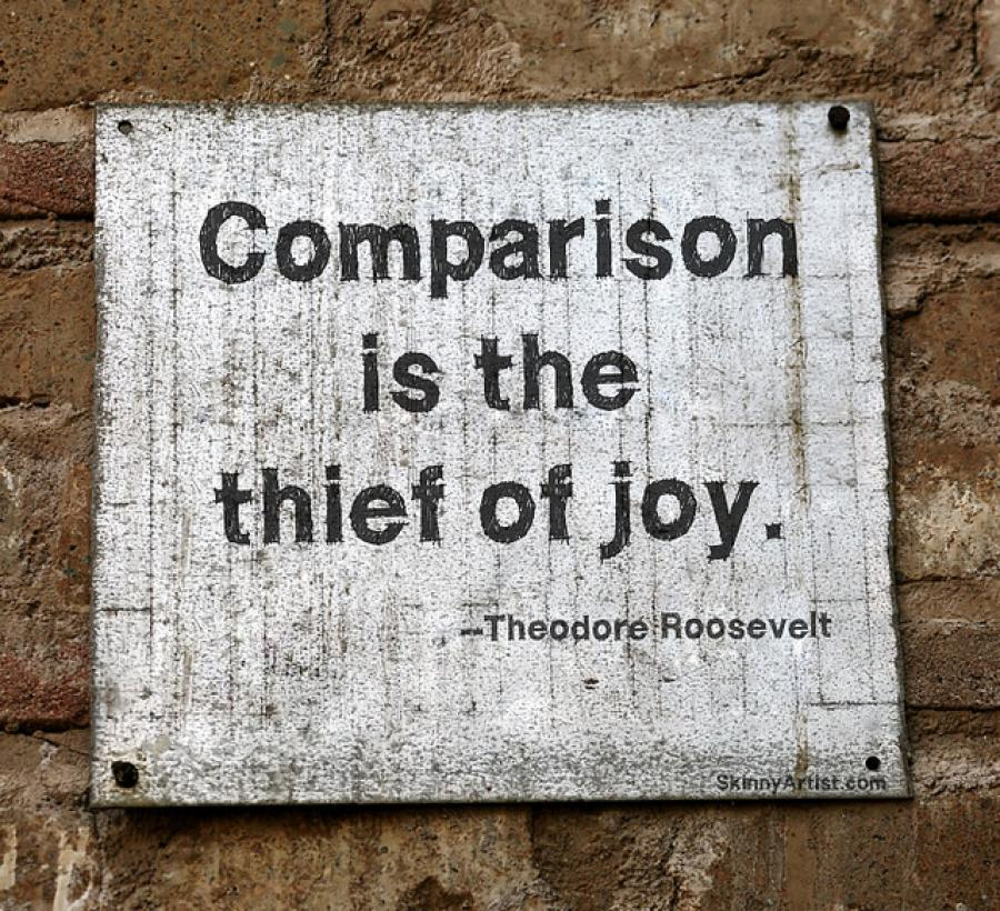'Comparison is the thief of joy': Measuring Year Abroad Successes