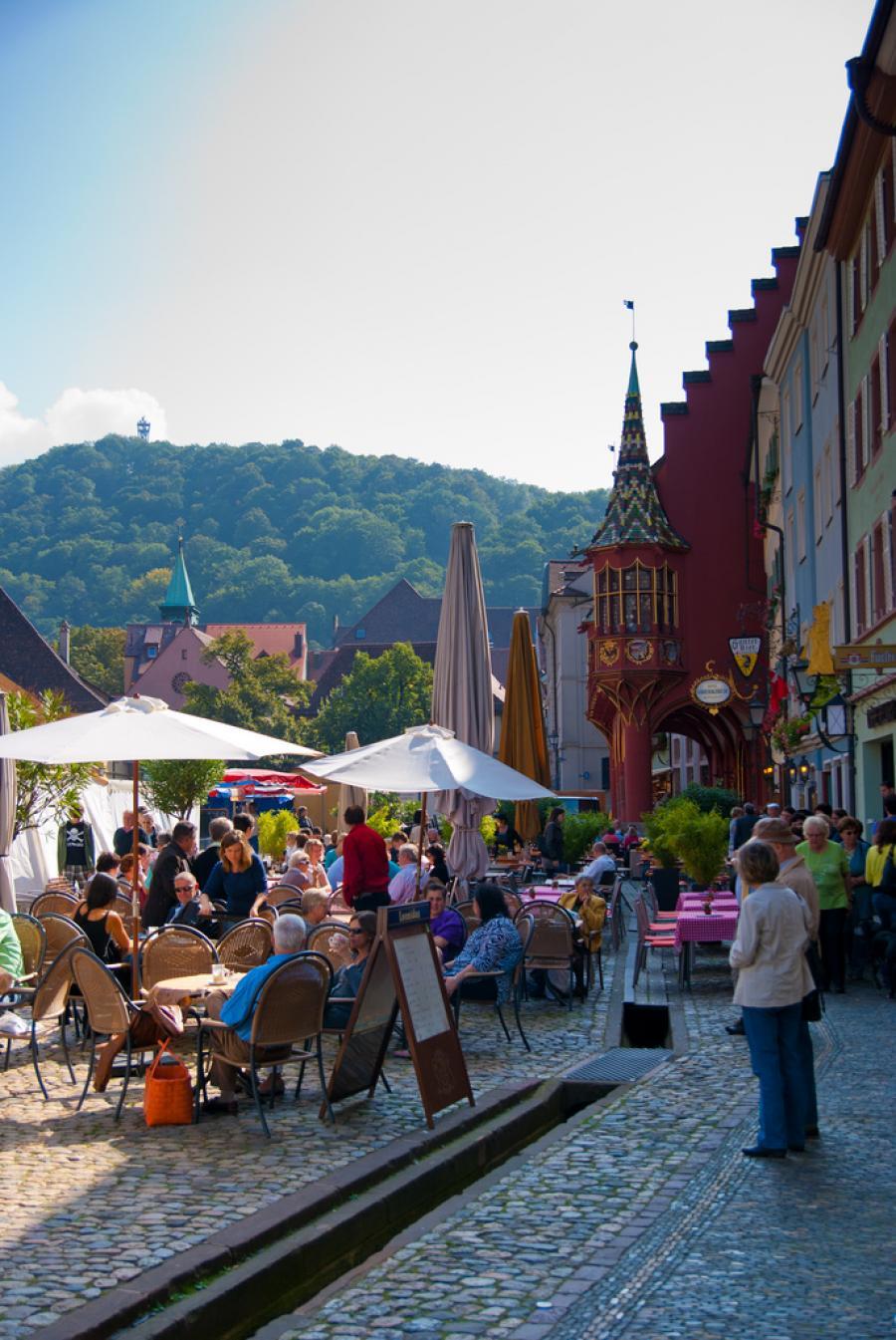 The Mole Diaries: Freiburg