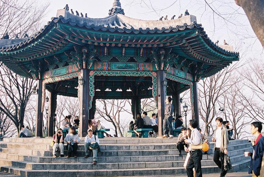 The Mole Diaries: Seoul