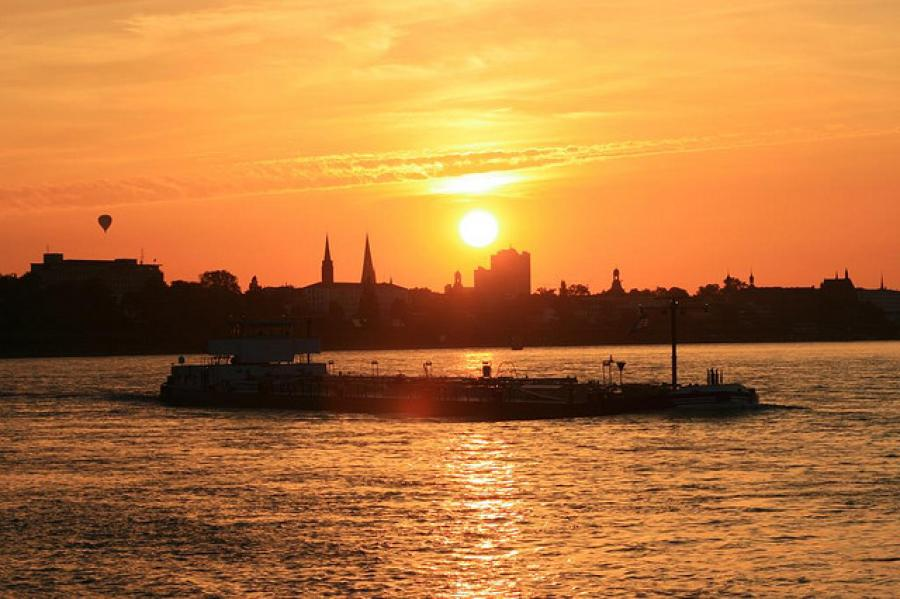 Life in Bonn: Barbecues and the Blues Brothers