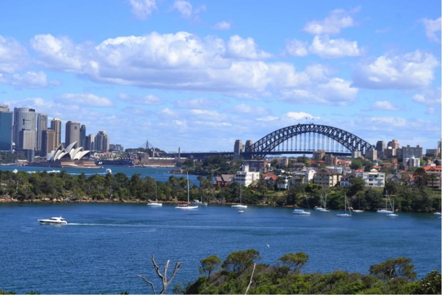 The Mole Diaries: Sydney