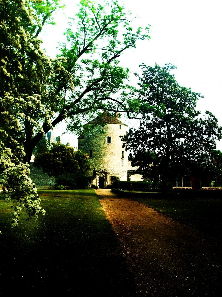 Château Life - 2 months at Château de Montaigne
