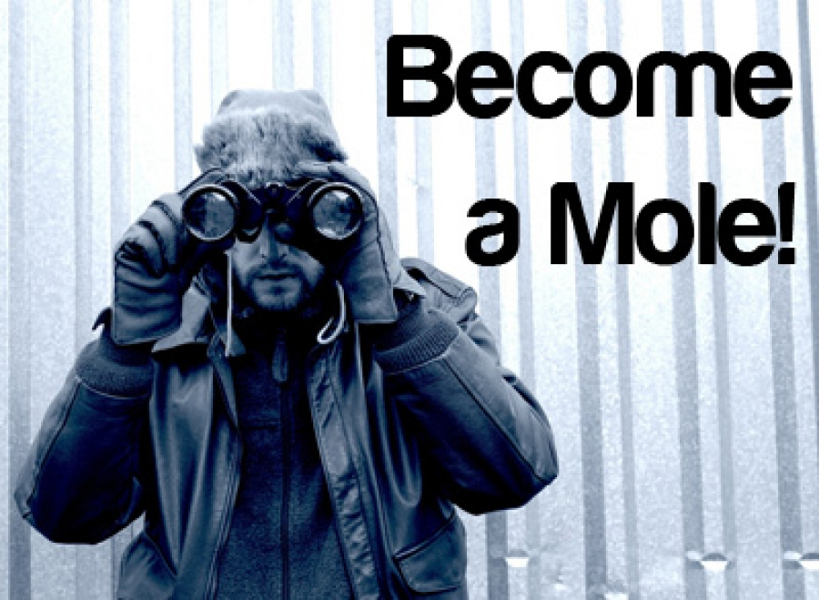 Become a Mole!