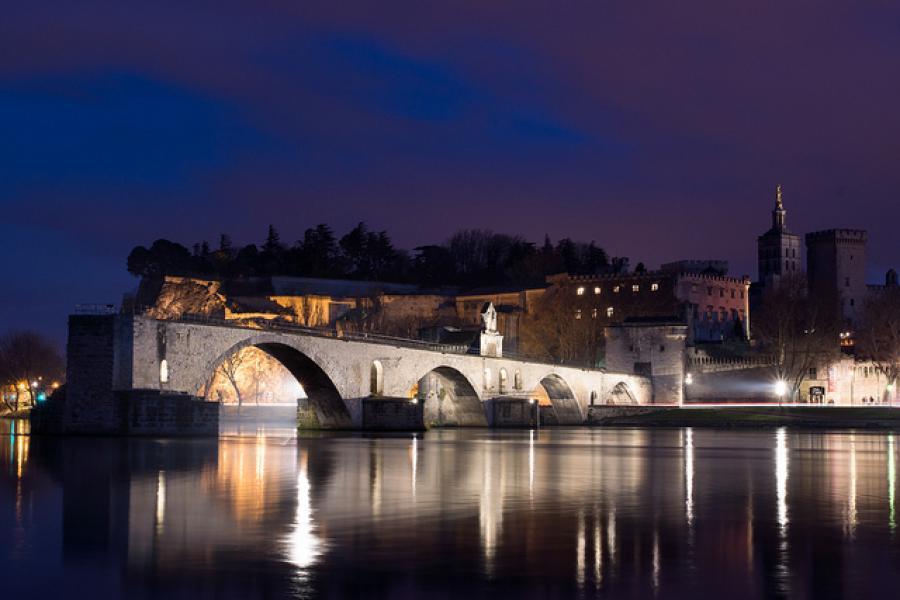 The Mole Diaries: Avignon