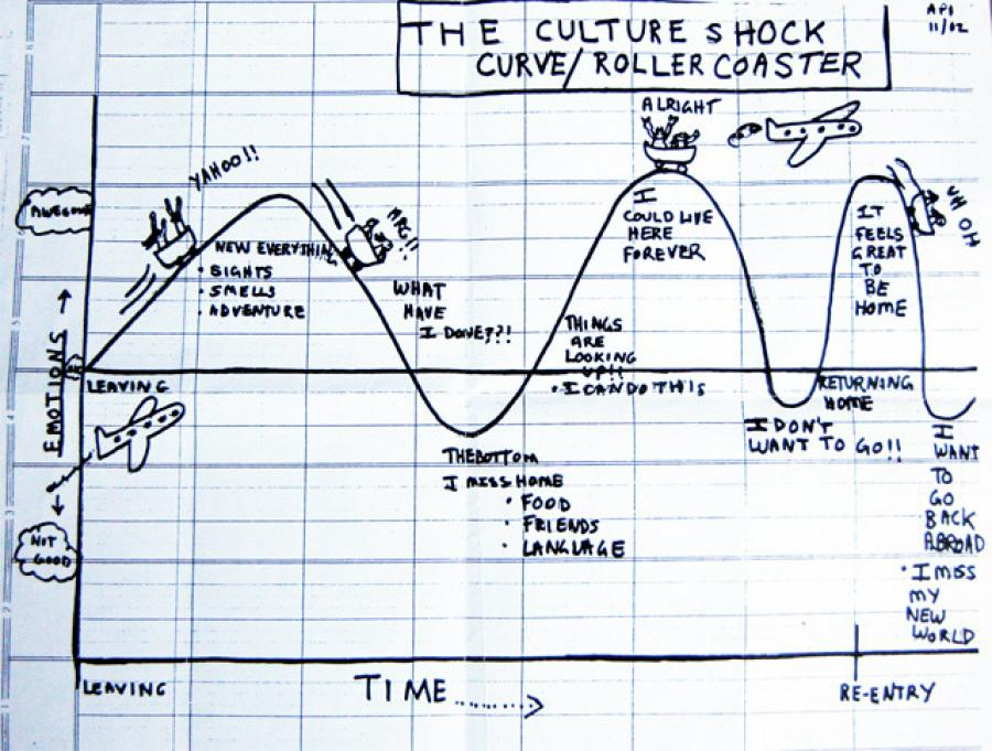 Unfortunately, there is not a vaccine for Culture Shock…