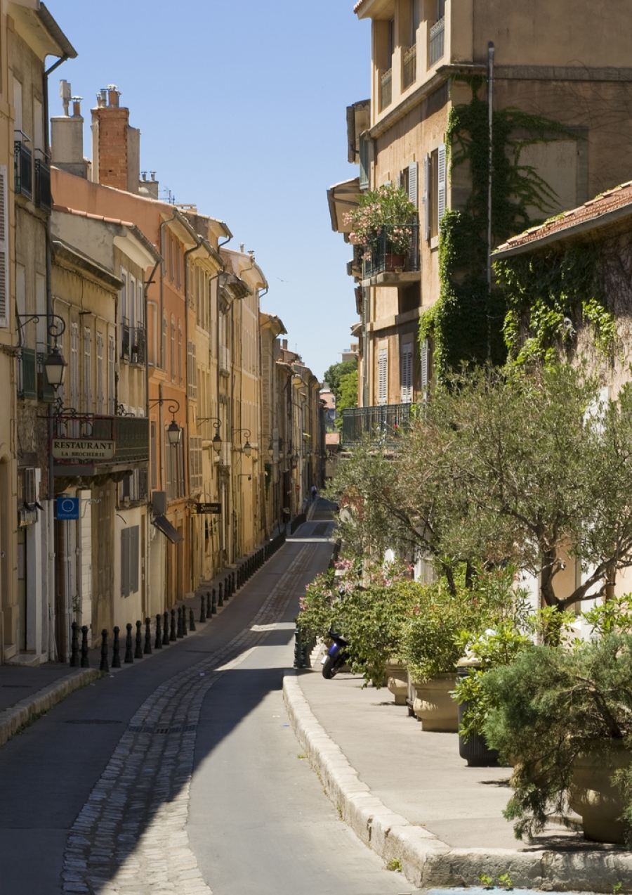 The Mole Diaries: Aix-en-Provence