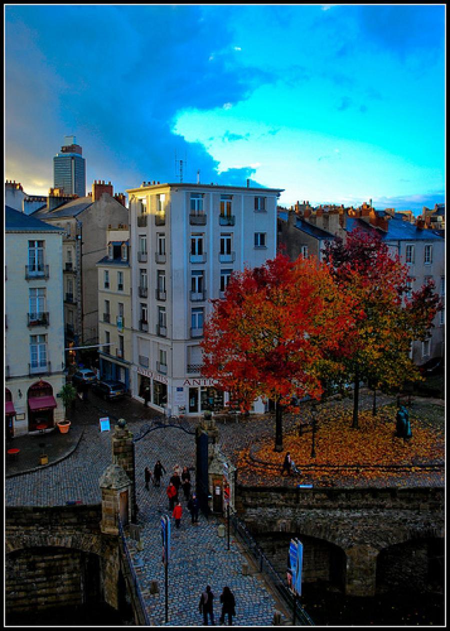 The Mole Diaries: Nantes