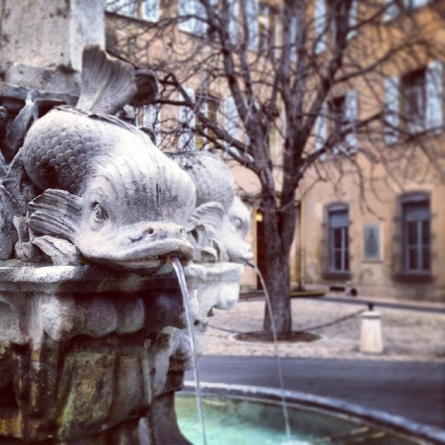 The Mole Diaries: Aix-en-Provence (Volume 4)