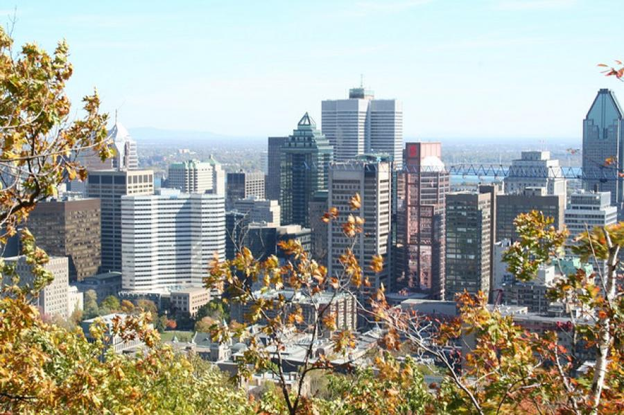 The Mole Diaries: Montréal