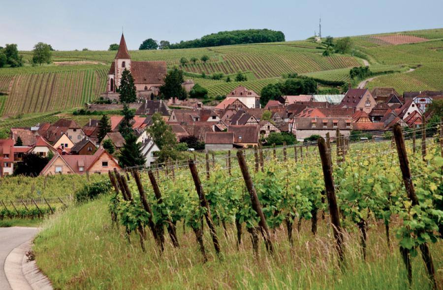 Ten reasons why you should choose Alsace for your year abroad