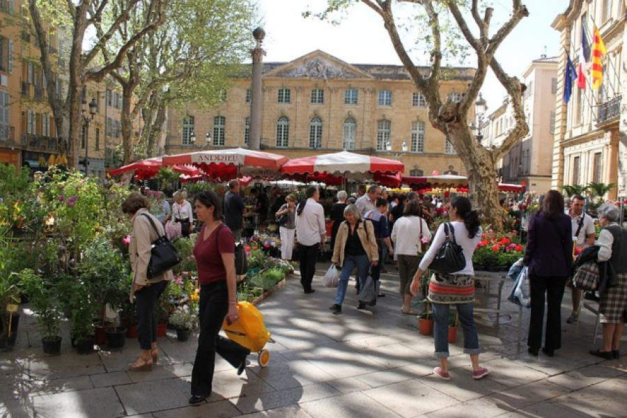The Mole Diaries: Aix-en-Provence (Volume 5)