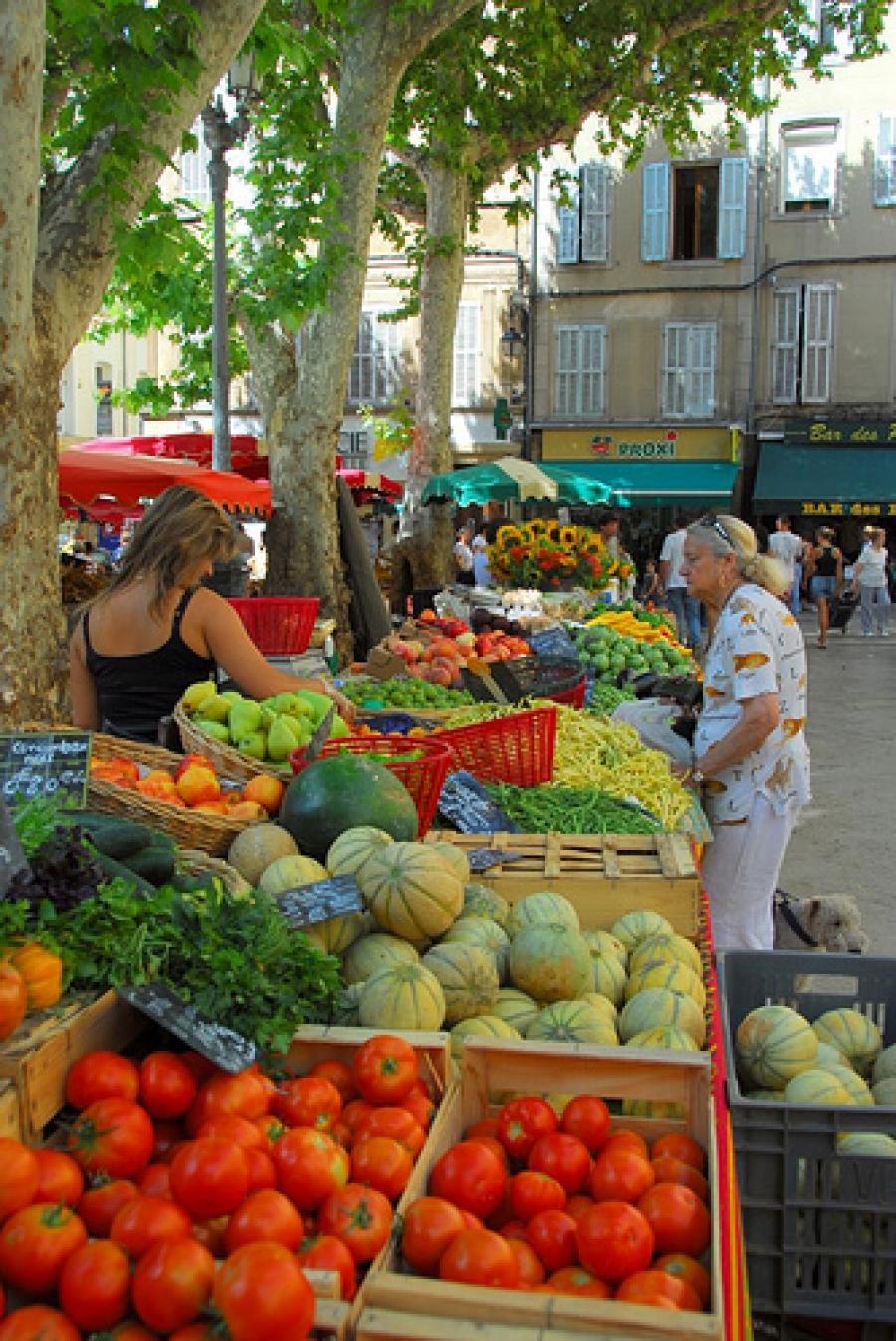 The Mole Diaries: Aix en Provence (Volume 2)