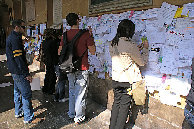 Pavia noticeboards