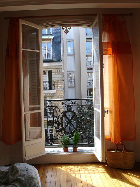Flat in Paris by Dodeckahedron