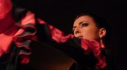 Flamenco_Dance_by_larryhalff