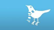 Cold Twitter bird