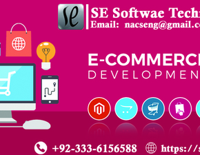 Expert Web Development and Designing for E-Commerce