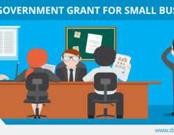 What is Government Grants?