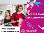 How important is diploma of higher education?
