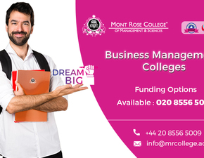 Benefits of Business Management Courses