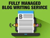 SEO Blog Article Writing Service - Meritmastering