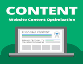 PROFESSIONAL CONTENT CREATION AND SEO SERVICES